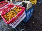 对各地水果市场扩大搬迁的一点看法