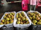 水果批发市场——代卖