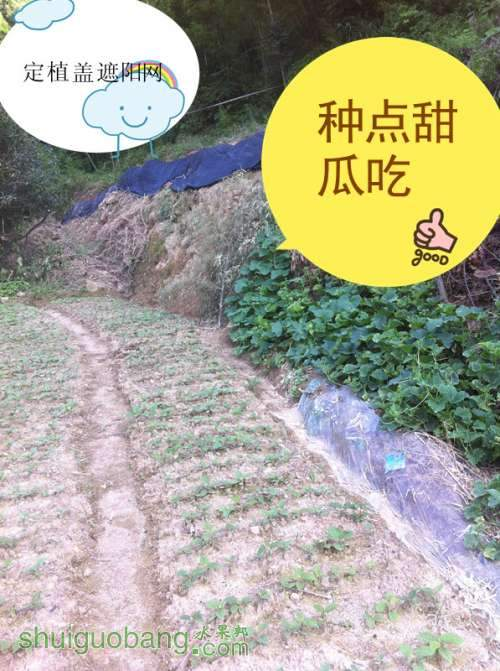 20130701 177_副本.jpg