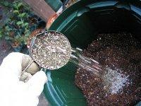 蓝莓种植实用知识小合集 最全家庭阳台盆栽蓝莓实用技术