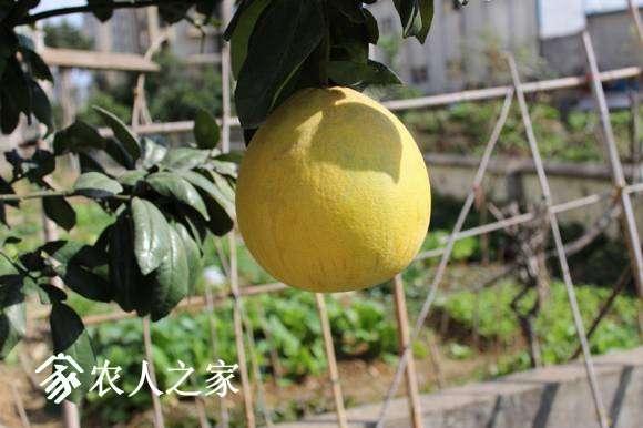 IMG_0193_副本.jpg