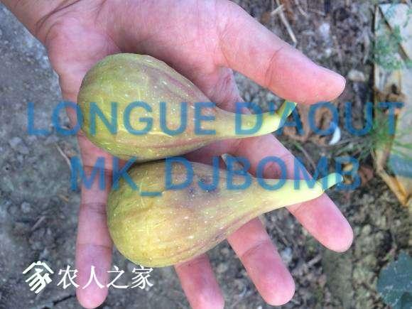 IMG_3358.JPG