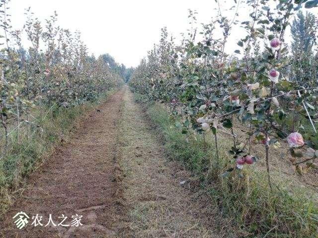 QQ图片20170918103459.jpg
