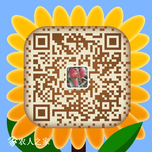 mmqrcode1506175950937.png