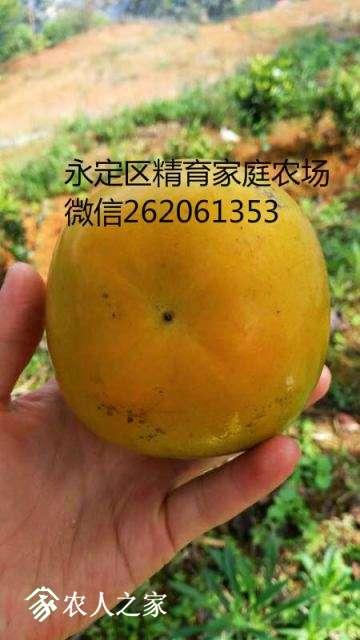 mmexport1513697877468_meitu_5.jpg