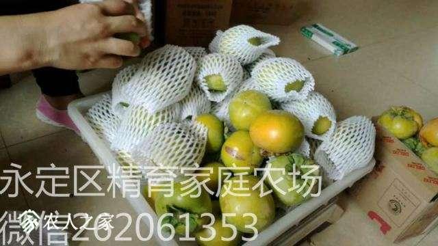 mmexport1513697926854_meitu_17.jpg
