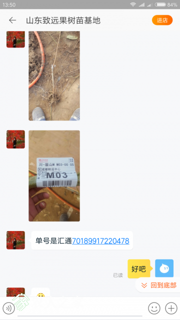 Screenshot_2018-01-09-13-50-43-561_com.taobao.taobao.png
