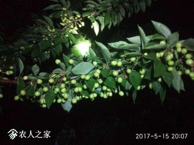IMG_20170515_200715.jpg
