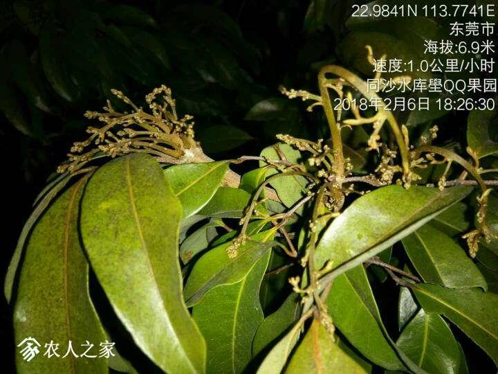 200921m4lx0xl2l2fx3zxf.jpg