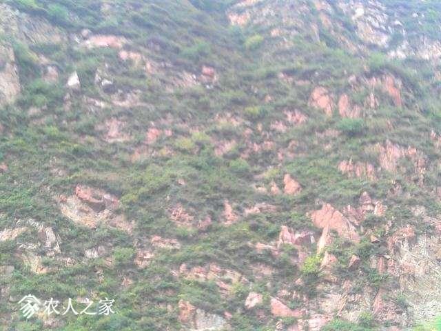 Camera_20131001_091945.jpg