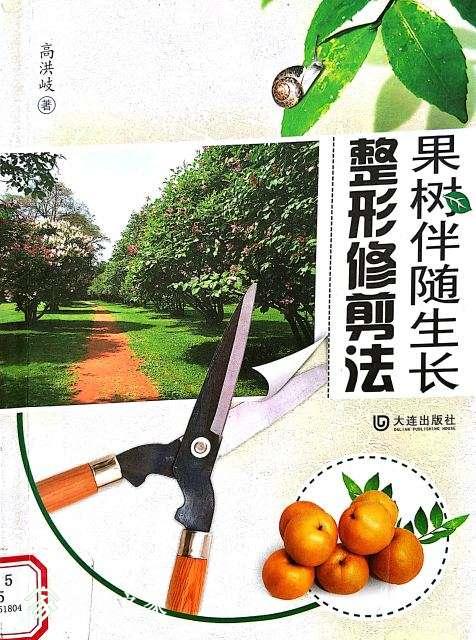 桃树修剪.jpg