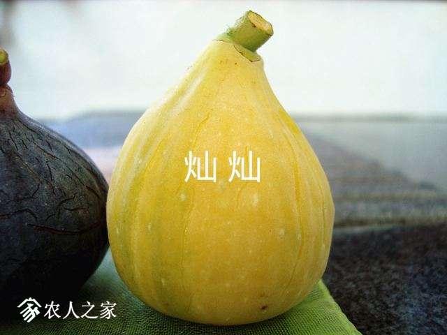 DSC03645_副本.jpg