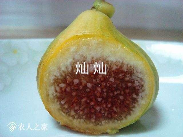 DSC03415_副本.jpg
