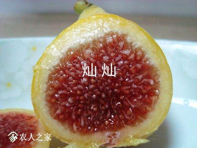 DSC03664_副本.jpg