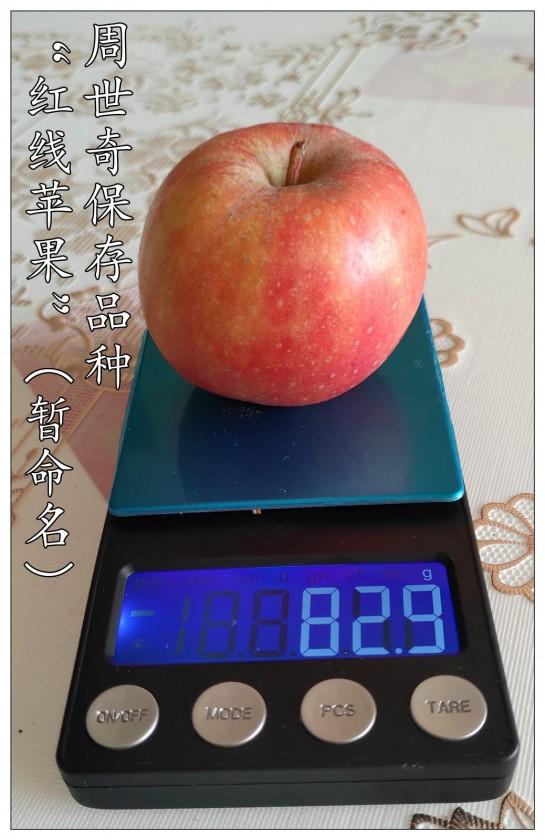 红线苹果6.jpg
