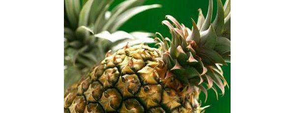 德尔蒙公司研发新转基因粉红色菠萝,获美国食品和药物管理局认可